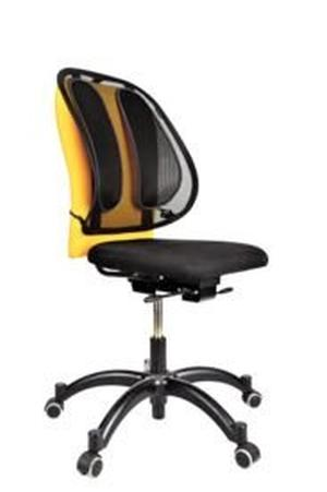 Fellowes Office Suites RuggensteunGaas