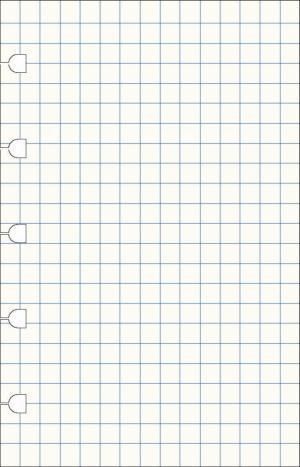 Filofax notitieboek pocket Notes wit geruit
