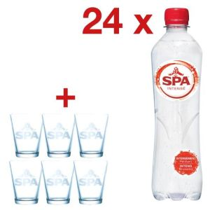 Actie Spa: 2 x Intense water, fles50 cl,