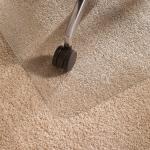 Floortex Cleartex vloermat voor tapijt f
