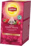 Lipton thee, Bosvruchten, ExclusiveSelec